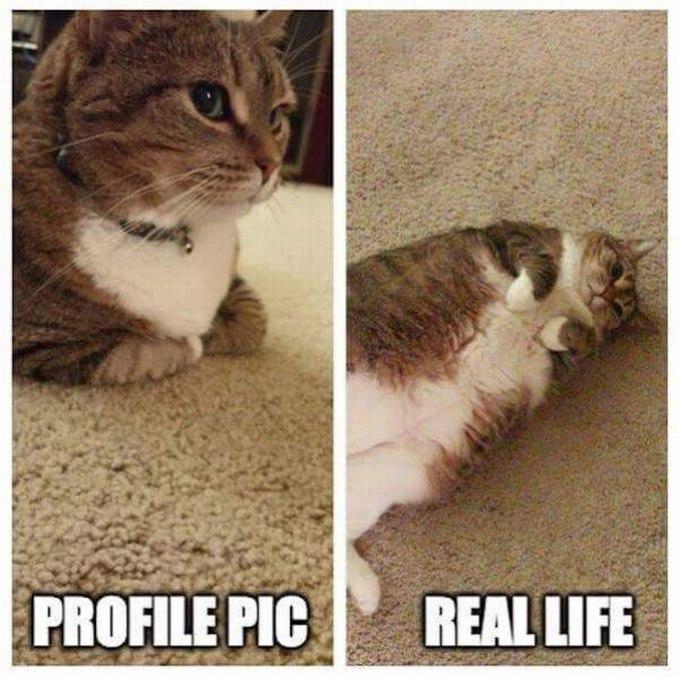 SpassPrediger.com - Picdump #010 - Lustiges Bilder und coole Funpics