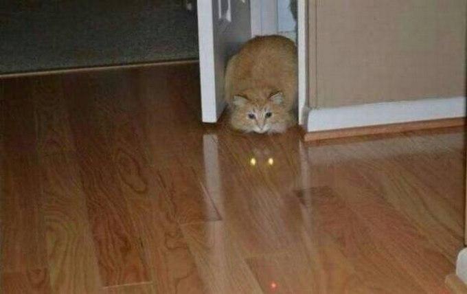 SpassPrediger.com - Picdump #013 - Lustiges Bilder und coole Funpics