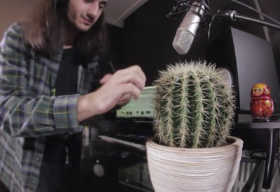 Drum&Bass mit Kaktus