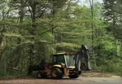 """""""Die Pollenbombe"""""""