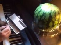 Kirbys Deamleand gespielt mit Stylophone und Melone