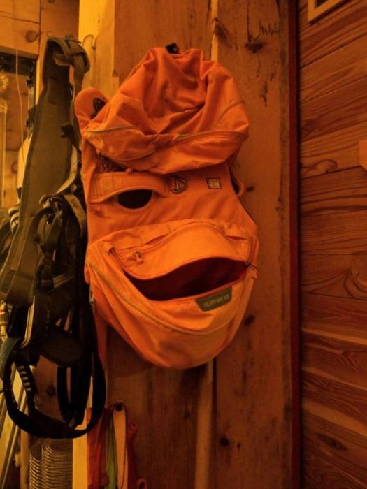 SpassPrediger.com - Picdump #054 - Lustige Bilder und coole Funpics - lustige Picdumps vom Spassprediger