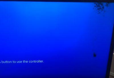 Ameisenplage im TV