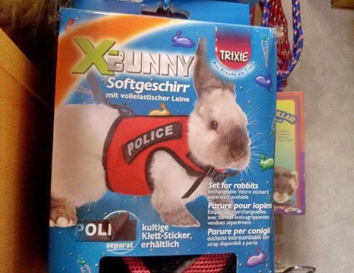SpassPrediger.com - Picdump #092 - Lustige Bilder und coole Funpics - lustige Picdumps vom Spassprediger