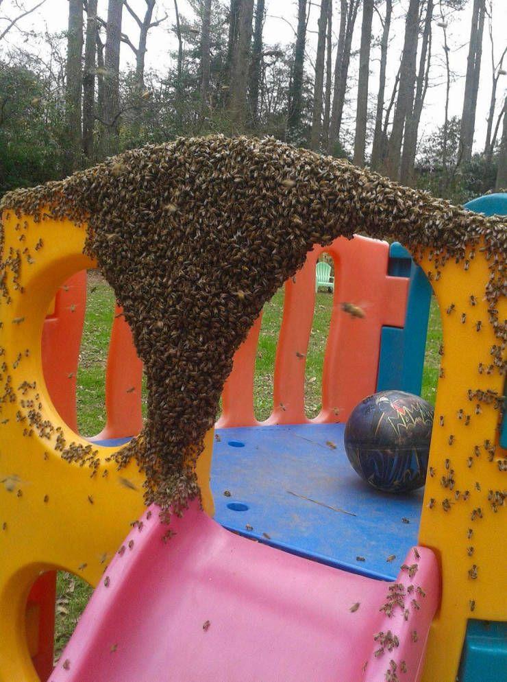 SpassPrediger.com - Picdump #098 - Lustige Bilder und coole Funpics - lustige Picdumps vom Spassprediger