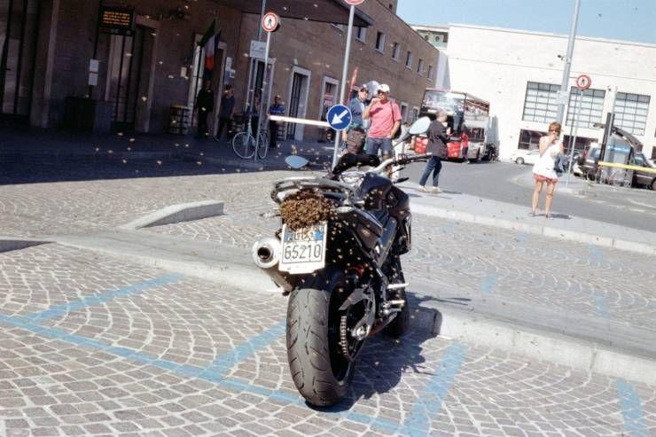 SpassPrediger.com - Picdump #114 - Lustige Bilder und coole Funpics - lustige Picdumps vom Spassprediger