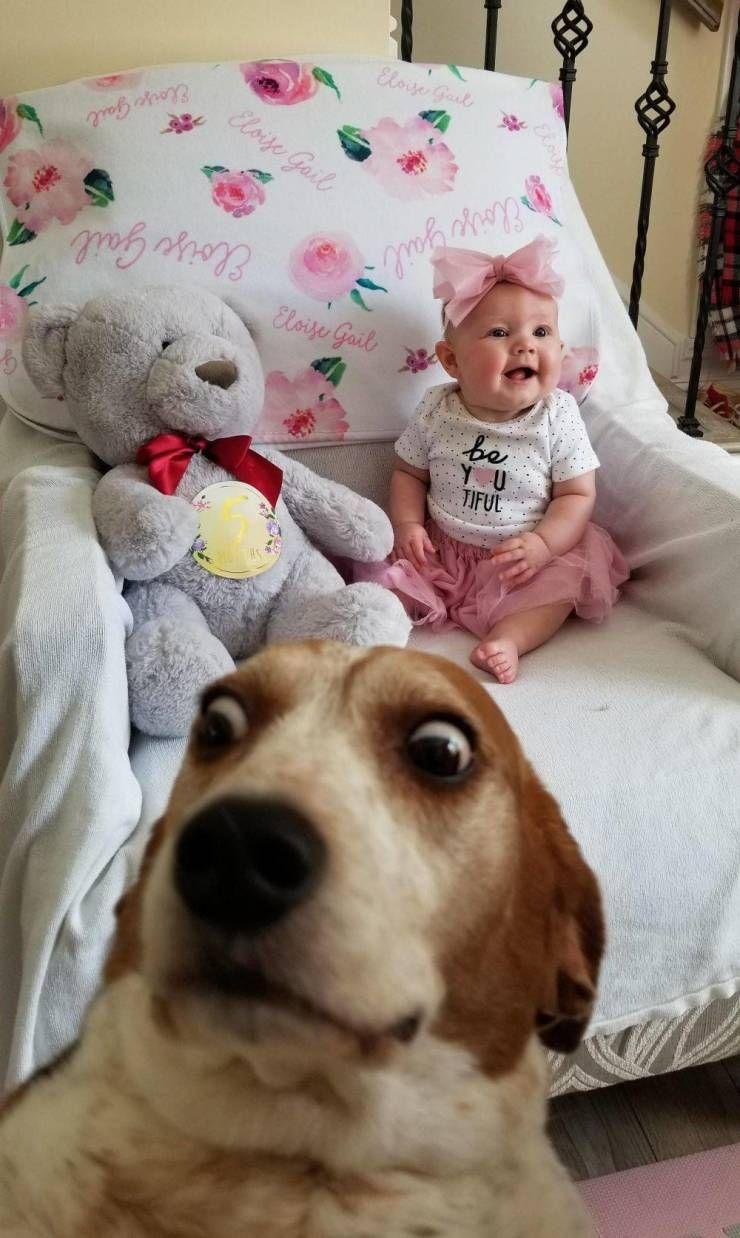 SpassPrediger.com - Picdump #119 - Lustige Bilder und coole Funpics - lustige Picdumps vom Spassprediger
