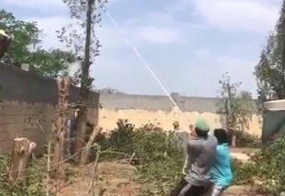 Profis fällen einen Baum