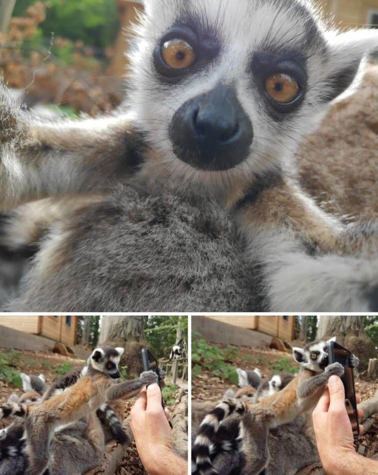 SpassPrediger.com - Picdump #133 - Lustige Bilder und coole Funpics - lustige Picdumps vom Spassprediger