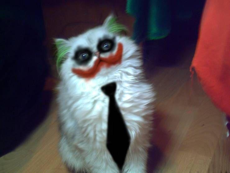 SpassPrediger.com - Picdump #164 - Lustige Bilder und coole Funpics - lustige Picdumps vom Spassprediger
