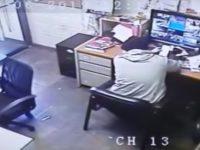 Hund holt sich Stuhl