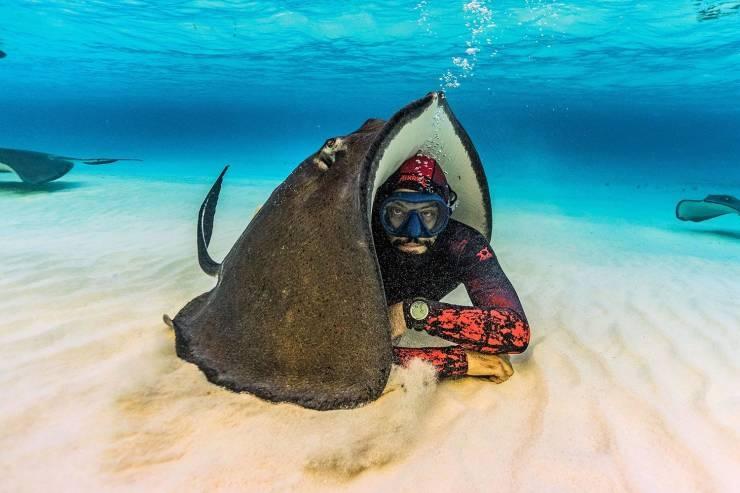 SpassPrediger.com - Picdump #183 - Lustige Bilder und coole Funpics - lustige Picdumps vom Spassprediger