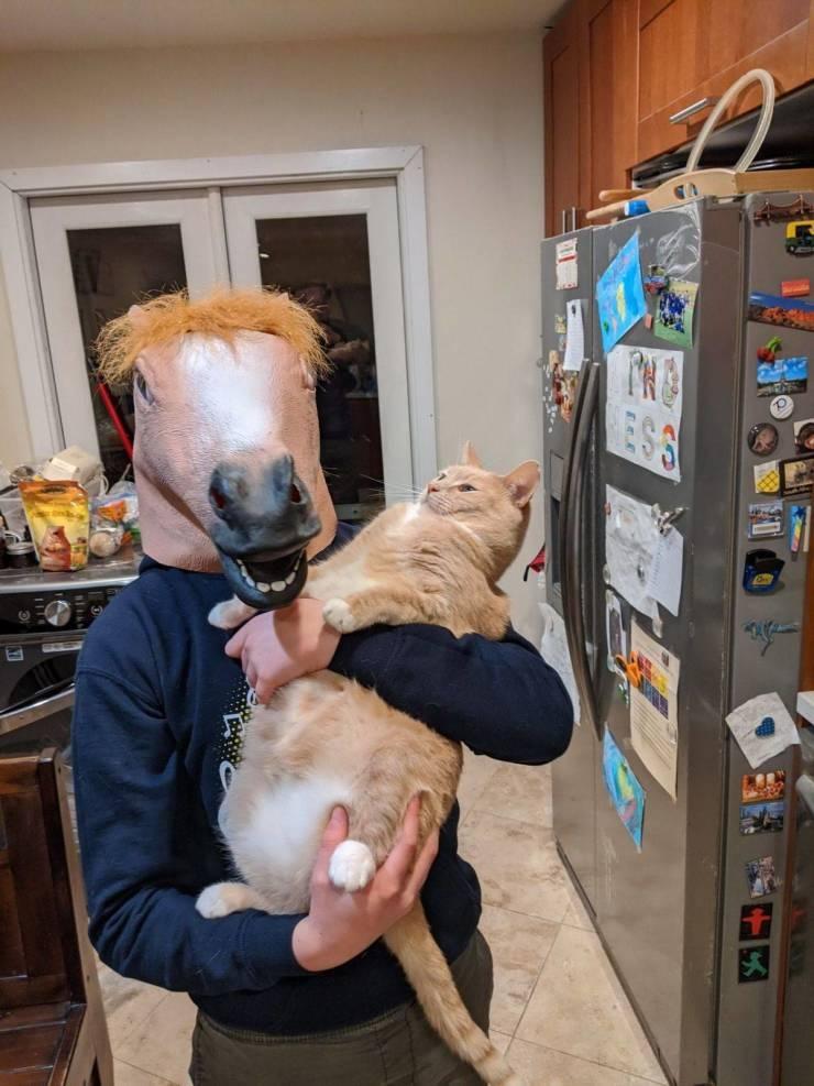 SpassPrediger.com - Picdump #185 - Lustige Bilder und coole Funpics - lustige Picdumps vom Spassprediger