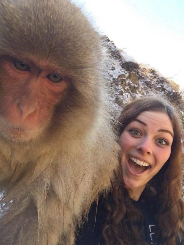 SpassPrediger.com - Picdump #190 - Lustige Bilder und coole Funpics - lustige Picdumps vom Spassprediger