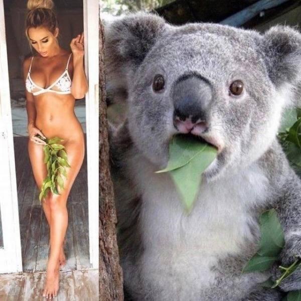 SpassPrediger.com - Picdump #227 - Lustige Bilder und coole Funpics - lustige Picdumps vom Spassprediger