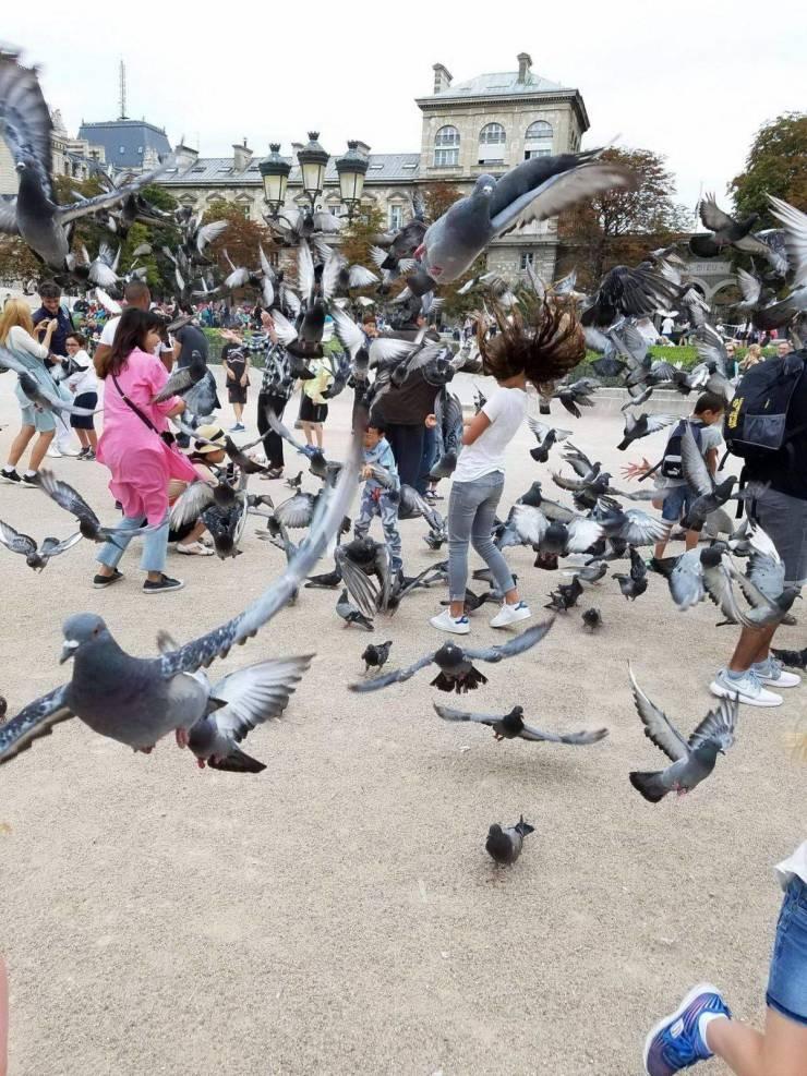 SpassPrediger.com - Picdump #228 - Lustige Bilder und coole Funpics - lustige Picdumps vom Spassprediger