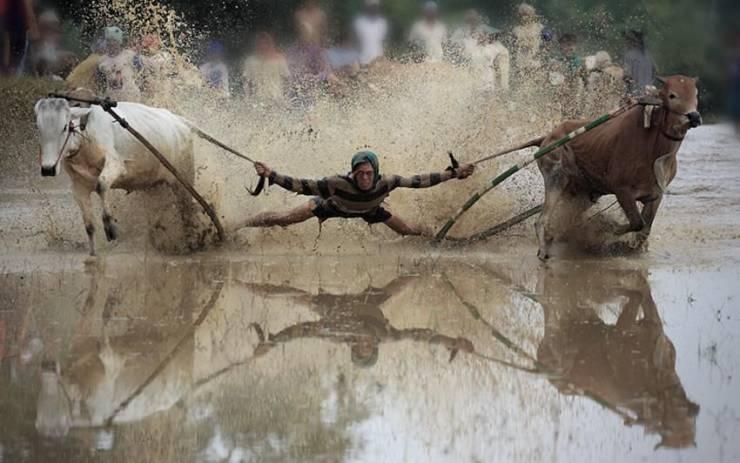 SpassPrediger.com - Picdump #233 - Lustige Bilder und coole Funpics - lustige Picdumps vom Spassprediger