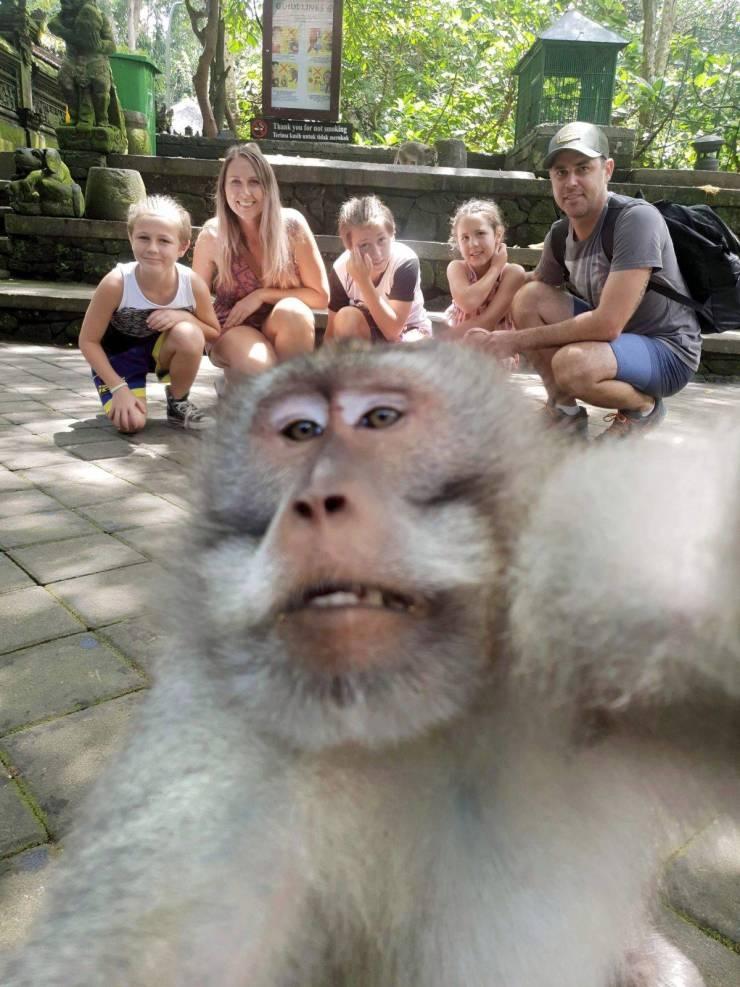 SpassPrediger.com - Picdump #236 - Lustige Bilder und coole Funpics - lustige Picdumps vom Spassprediger