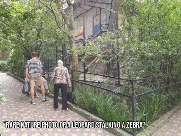 SpassPrediger.com - Picdump #239 - Lustige Bilder und coole Funpics - lustige Picdumps vom Spassprediger