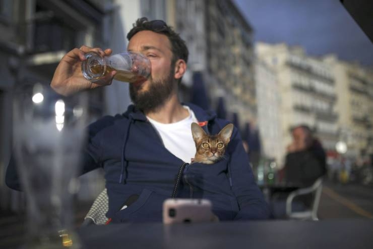 SpassPrediger.com - Picdump #241 - Lustige Bilder und coole Funpics - lustige Picdumps vom Spassprediger