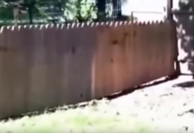 Mann baut Zaun um Hund aufzuhalten